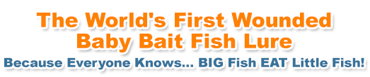 The World's First Wounded Baby Bait Fish Lure